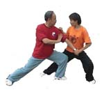Two Man push Hand with Professor Li